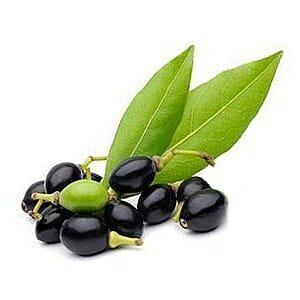 Sapone di Aleppo certificato biologico Sarjilla - olio di alloro e olio di oliva